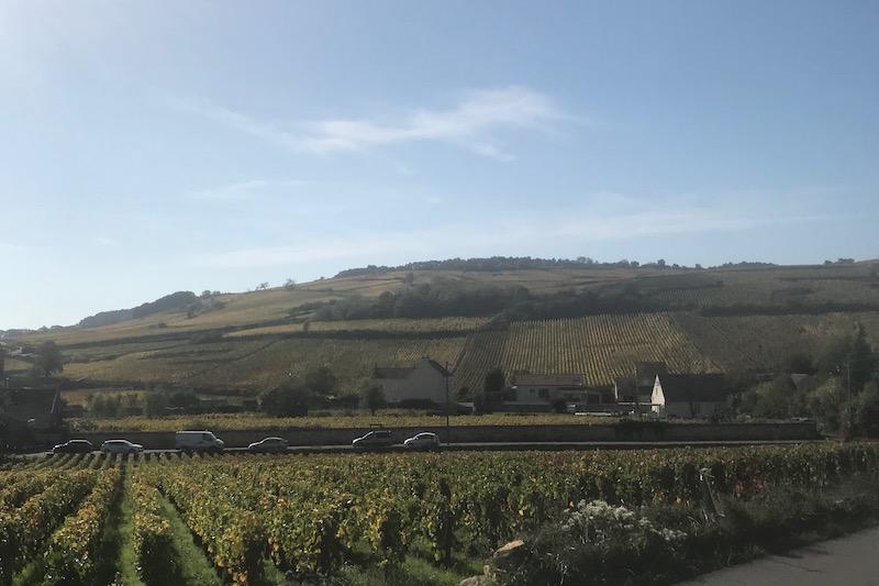 Meursault slutter og Auxey-Duresses begynder