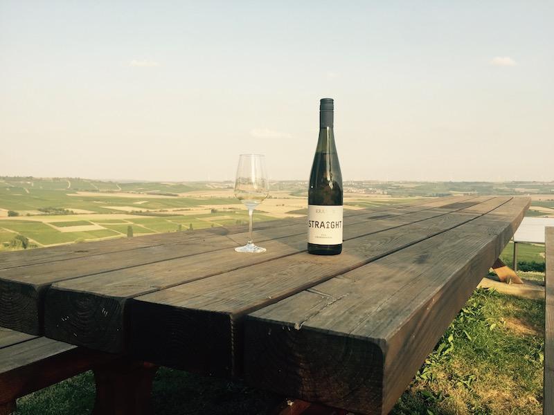 Smukt kig over tyske vinmarker