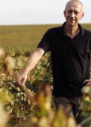 Thierry Callot i vinmarken