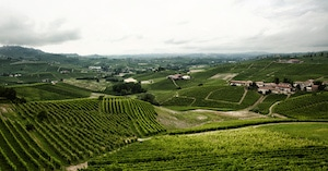 DOCG i Piemonte